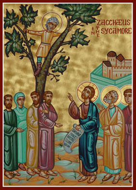 Zacchaeus in the sycamore